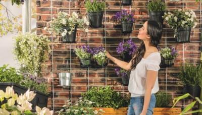 10 okouzlujících a nenáročných rostlin na balkón