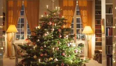 Jak doma pečovat o vánoční stromek – ve stojanu i v květináči