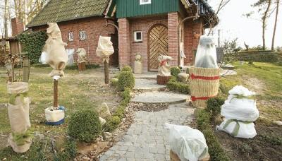 Jak ochránit rostliny před zimními mrazy