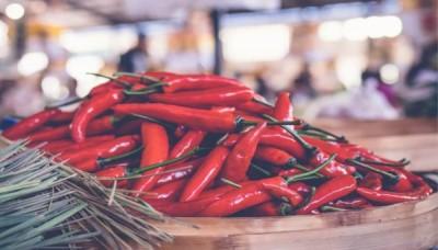 Odrůdy sladkých a chilli paprik