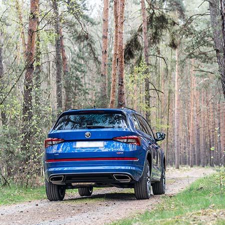 Auta do lesa nepatří