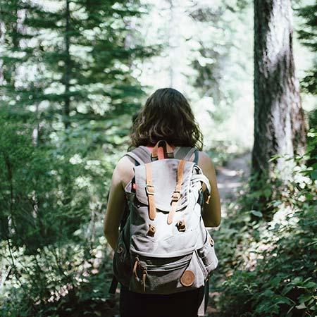 V lese choďte jen po vyznačených stezkách